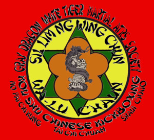 Wing Chun Classes In Hendersonville